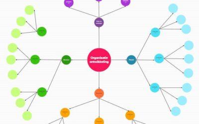 Organisatie-ontwikkeling online in beeld